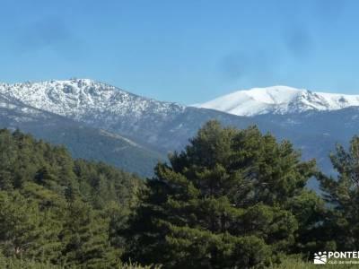 Peña Águila–Valle de la Fuenfría; bosques en otoño rutas por navacerrada valle de jerte cerezo
